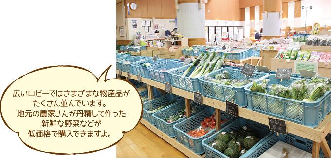 都城圏域特集 「青井岳荘」イメージ3