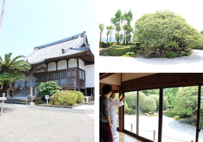 萬福寺  桃山式庭園
